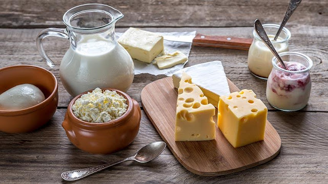 Good Sources Of Protein - Milk,Cheese And Yogurt