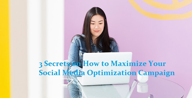 3 Secrets on How to Maximize Your Social Media Optimization Campaign