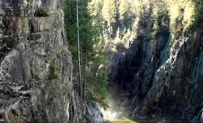 Rocky gorge and trees