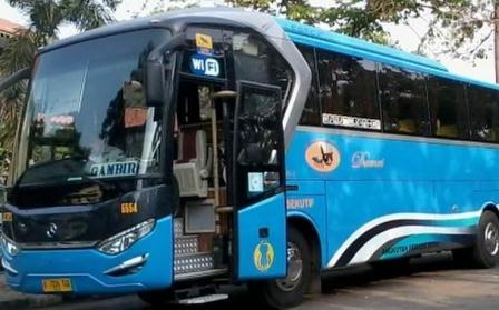 Rute Jadwal Tarif Bus Damri dari dan ke Bandara Halim Perdanakusuma Jakarta