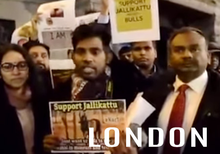 Tamils stage protest before Indian embassy in London for jallikattu