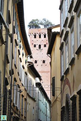 Torre Guinigi en Lucca, Toscana