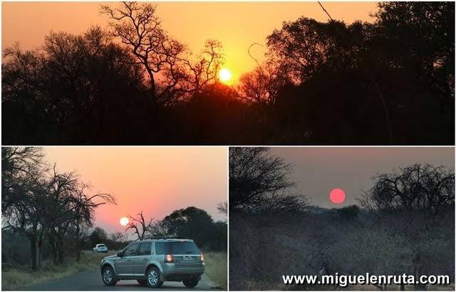 Safari-por-libre-en-Kruger-Shukuza-puesta de sol