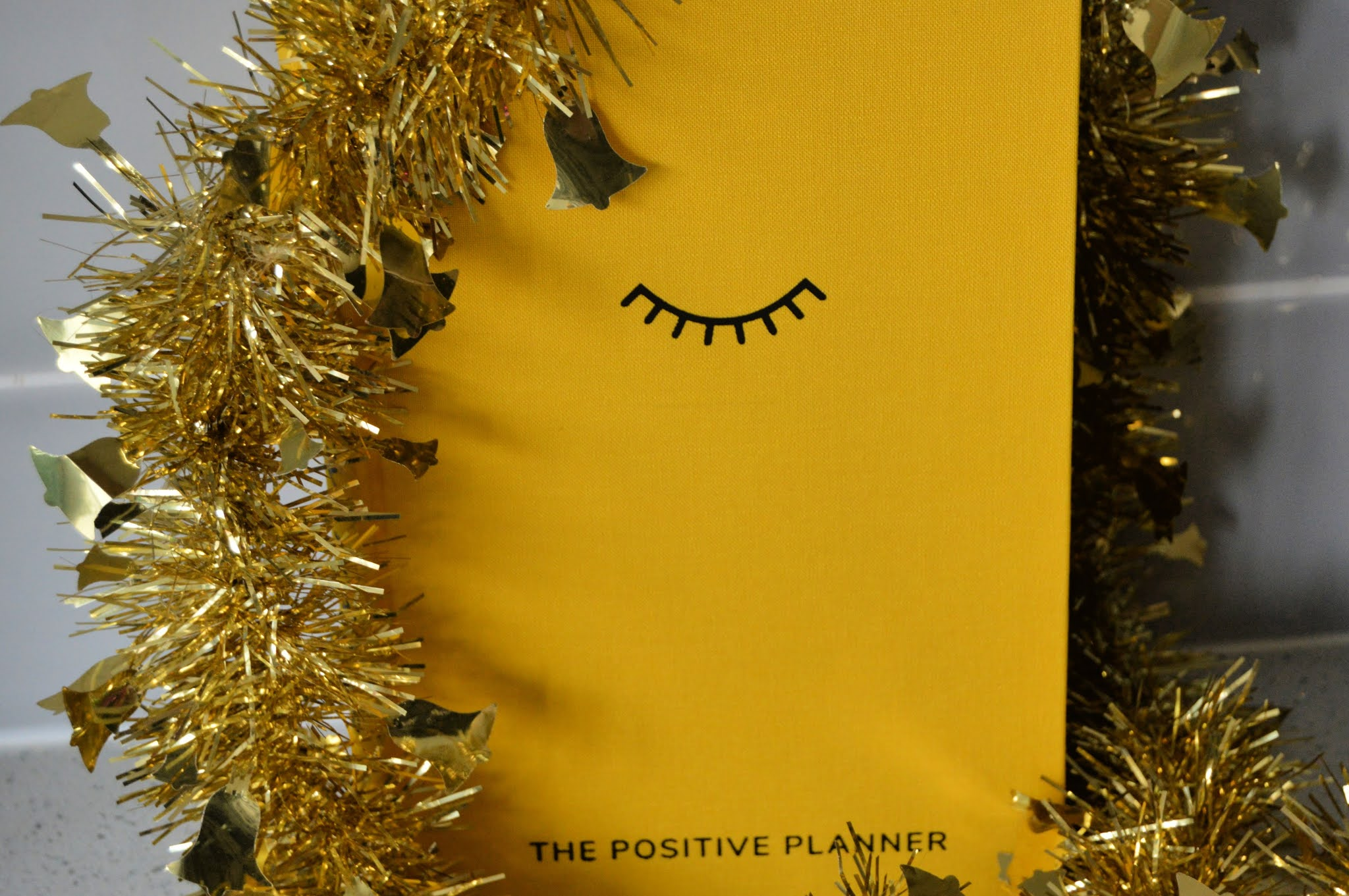 the positive diary