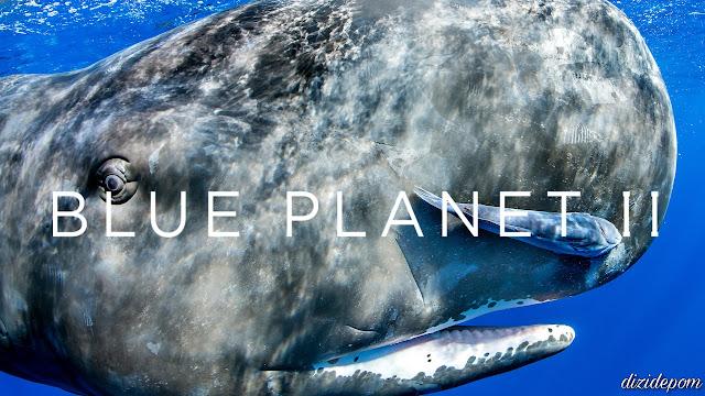 Blue Planet II Dizisi İndir
