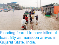 https://sciencythoughts.blogspot.com/2015/06/flooding-feared-to-have-killed-at-least.html