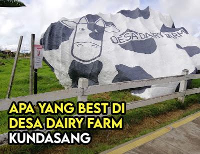 Apa yang Best Di Desa Dairy Farm Kundasang