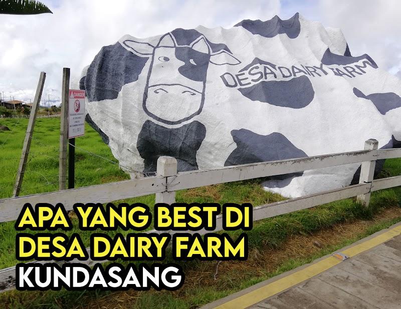 Desa Dairy Farm Kundasang Sabah. Apa Tarikan Pelancongan di Sini ?