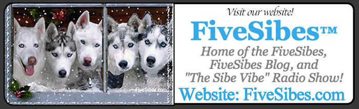 NEW FIVESIBES WEBSITE!