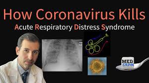 How Corona virus Kills you in your sleep #Video Infographic