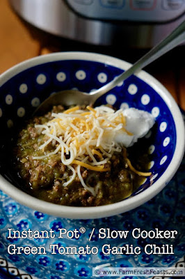 photo of a bowl of Instant Pot or Slow Cooker  Green Tomato Garlic Chili