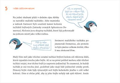 Dim Swim se učí plavat (Edita Makovcová, Linda Kolaříková, ilustrace Lenka Dřízhalová)