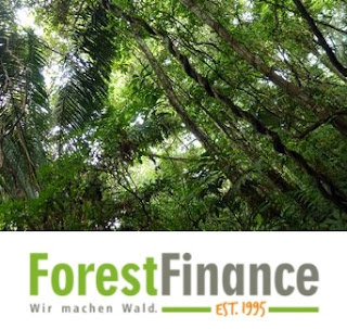 Forest Finance