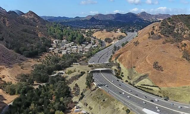 Green bridge for pumas traversing California's Freeway 101 will be world's biggest
