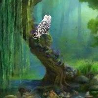 FunEscapeGames - Hidden O…