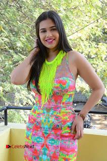 Telugu Actress Prasanna Stills in Short Dress at Inkenti Nuvve Cheppu Press Meet Stills  0095.JPG