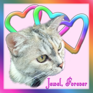 Jewel Over the Rainbow Bridge badge.