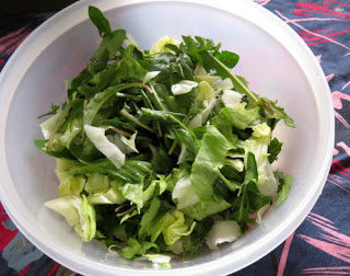 wild salad greens mixed with lettuce