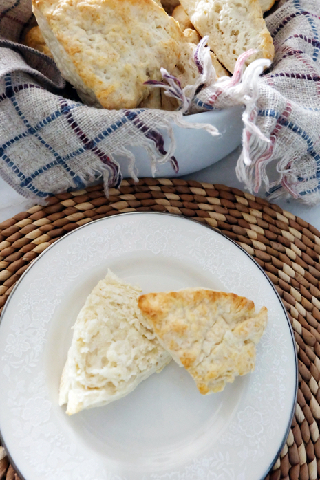 plated split biscuit