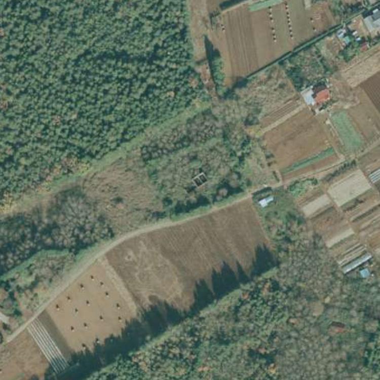 スゴログ 竹内農場