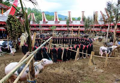 Hal-hal Tentang Toraja yang Tidak Terlupakan