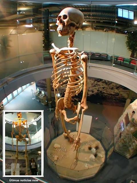 El Esqueleto Gigante del Mystery Park