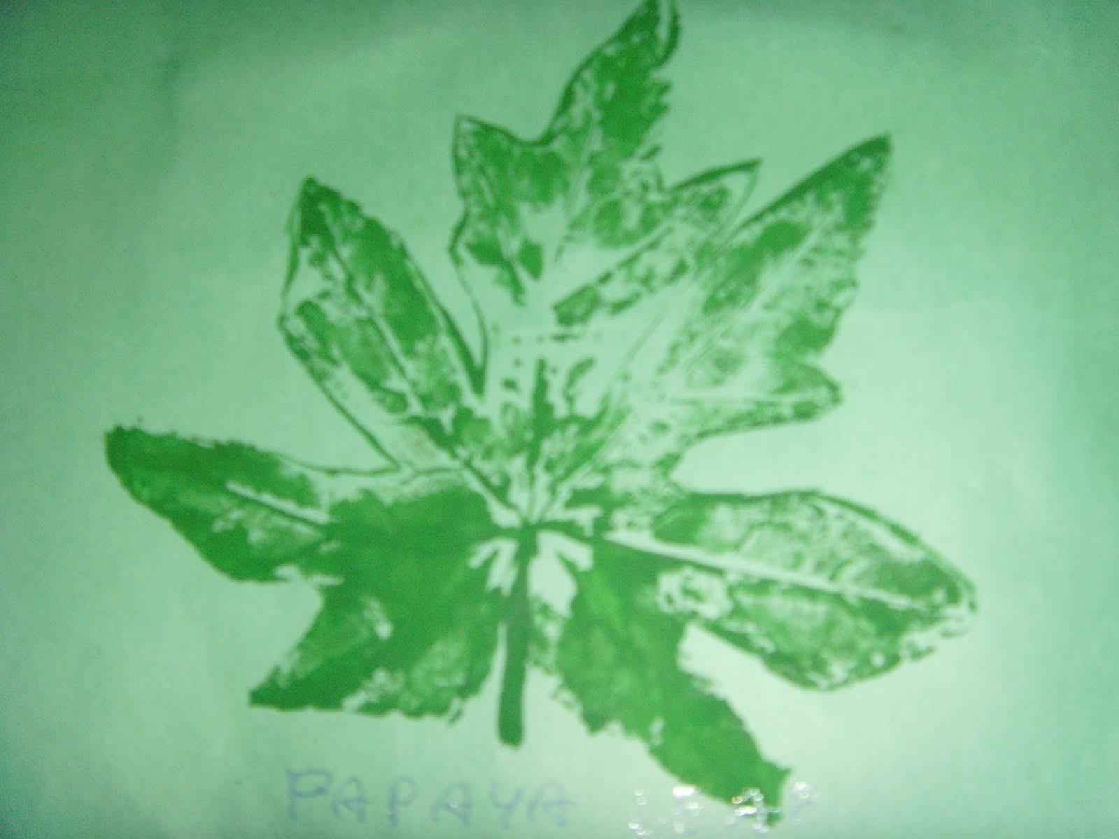 Craft Works Leaf Tracing