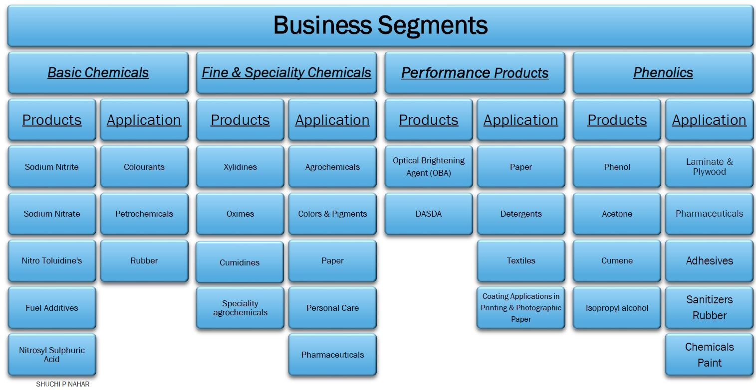 Deepak Nitrite Company Analysis