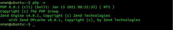 Pengujian hasil instalasi PHP 8.0 melalui konsol