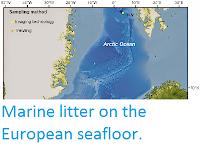 http://sciencythoughts.blogspot.co.uk/2014/05/marine-litter-on-european-seafloor.html