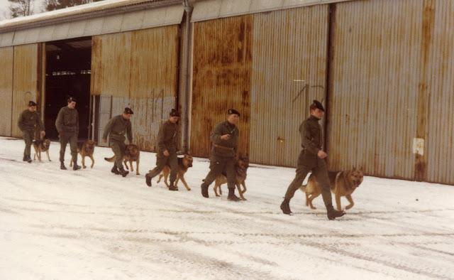 Maitres chiens 1978