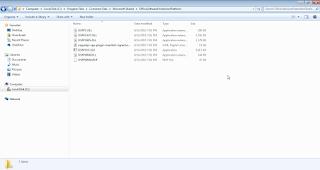 OfficeSoftwareProtectionPlatform