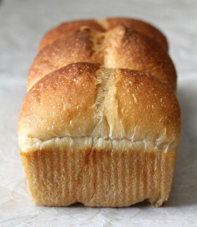 Sourdough Hokkaido Milk Bread