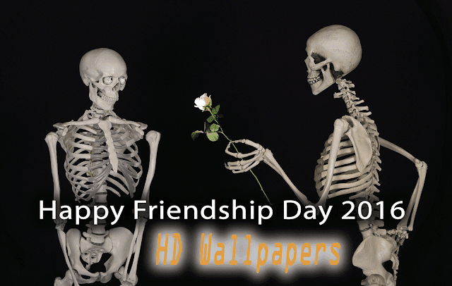 World friendship day 2016 HD Images| international friendship day Wallpaper