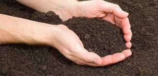 تناول الطين اكل الطين الطين سبب تناول الطين
