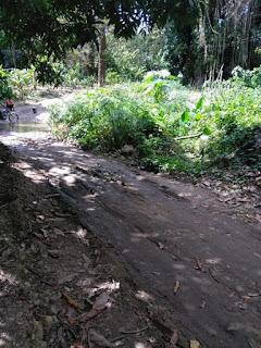 Comunitario piden construcción camino vecinal