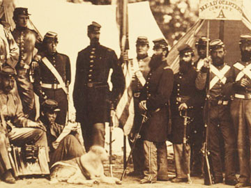 Civil War Quilts Dogs On Civil War Quilts