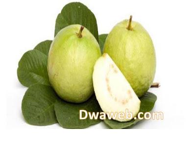 مستخلص أوراق الجوافة تهدئ الكحة والسعال