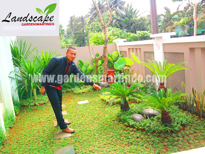 Jasa Tukang Taman Pati