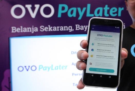 Solusi dan Penyebab OVO PayLater Akan Segera Hadir Terus