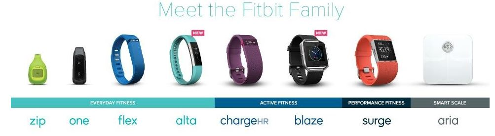 meet the fitbit