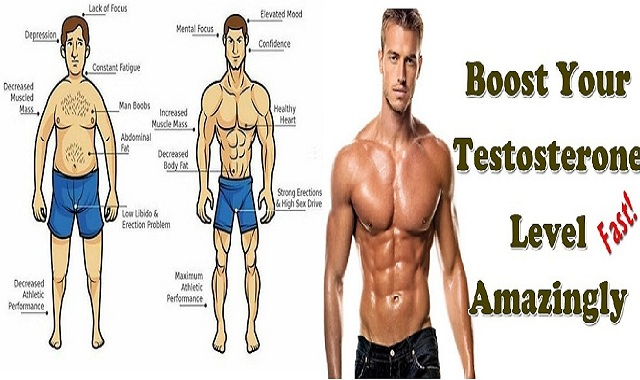 Four Ways to Boost Your Natural Testosterone Levels