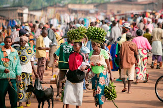 Agriculture has always played a fundamental role in the lives of people on the African continent.