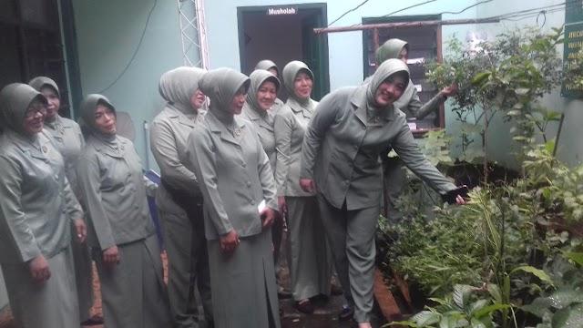 Ketua Persit Kodim Depok Terkesan Melihat Tanaman Sayur Hidroponik di Koramil Sukmajaya