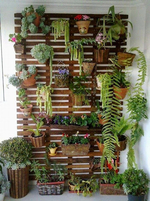 Decorar un Jardín Vertical