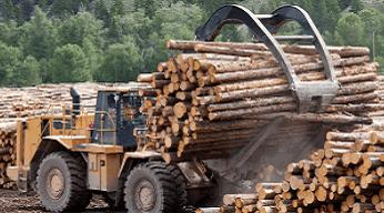 Adapun faktor-faktor yang dapat mempengaruhi pemanenan kayu menurut Gautama et al., (2019) adalah ukuran kayu, lama beroperasi, volume kayu, tenaga kerja, produksi persatuan waktu, fasilitas yang telah ada, peraturan yang ada, kebijaksanaan pemilik hutan, dan pemuliaan tegakan