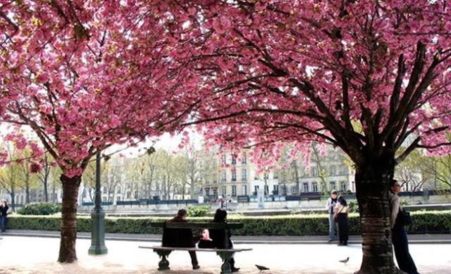 Paris em Março