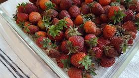 ripe strawberries in a glass dish