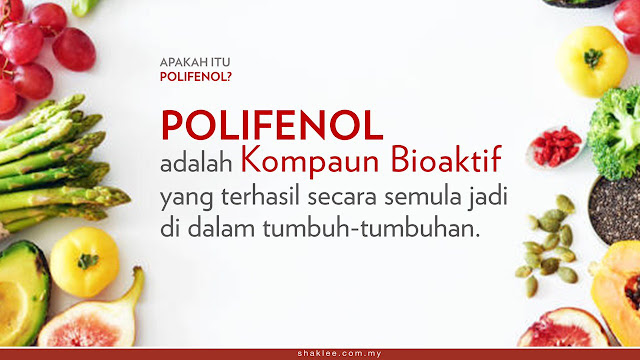 Apa Itu Polifenol dan Kenapa Badan Perlukan Polifenol