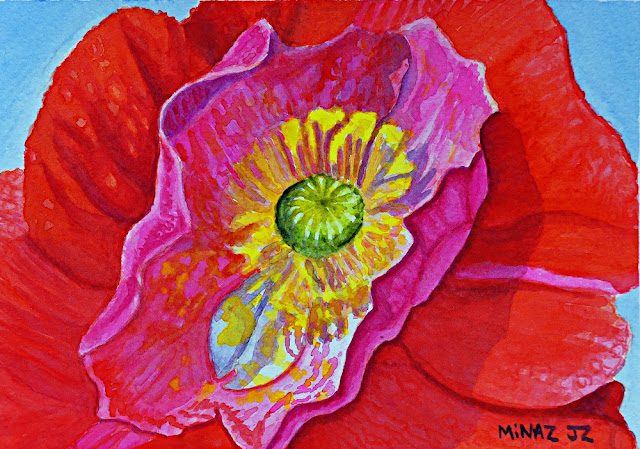 Small watercolor of pink red poppy by Minaz Jantz